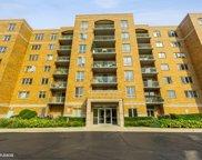 6815 N Milwaukee Avenue Unit #705, Niles image