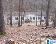 115 Country Living Circle, Odenville image