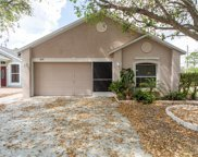 10519 Opus Drive, Riverview image