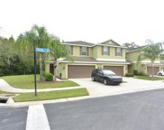 8502 Zapota Way, Tampa image