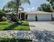 18115 Regents Square Drive, Tampa image