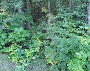 M10 L35 Great Moose Drive, Hartland image