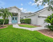 2812 Duncan Tree Circle, Valrico image