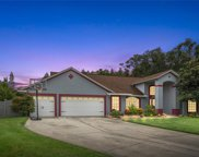 17405 Mary Charlotte Place, Lutz image
