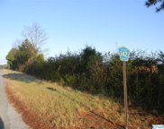 Tract # 2 County Road 142, Sand Rock image