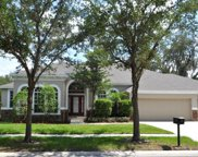 5816 Terncrest Drive, Lithia image