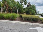 14236 Oasis Cove Boulevard Unit 3204, Windermere image