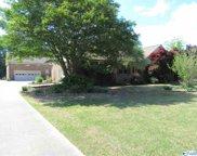 101 Village Drive, Hartselle image