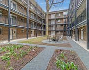 1321 West Birchwood Avenue Unit 402, Chicago image