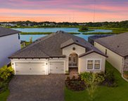 12831 Satin Lily Drive, Riverview image