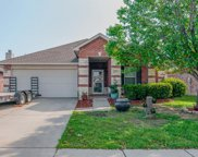 12636 Foxpaw Trail, Fort Worth image
