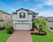 19452 Roseate Drive, Lutz image