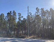 Whitehouse Fork Road, Bay Minette image