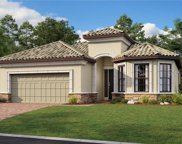 20151 Umbria Hill Drive, Tampa image