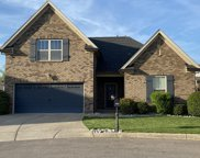 7003 Honeytree Ct, Spring Hill image