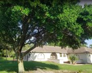 11487 Stoneville Court, Spring Hill image