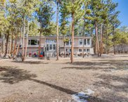 19337 Knotty Pine Way, Monument image