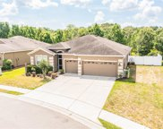 4361 Stoney River Drive, Mulberry image