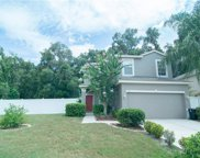 113 Friesian Way, Sanford image