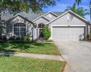 12405 Glenfield Avenue, Tampa image