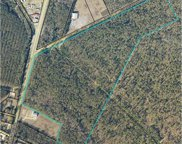65 Acres Weehaw Plantation Dr., Georgetown image