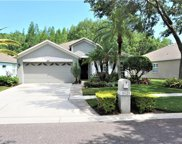 19125 Chemille Drive, Lutz image