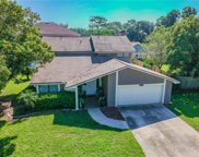 16229 W Course Drive, Tampa image