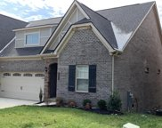 2687 Sugarberry Rd, Knoxville image