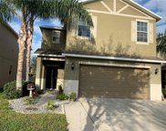 10523 White Peacock Place, Riverview image