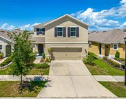 10128 Geese Trail Circle, Sun City Center image
