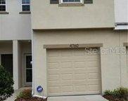 4760 White Sanderling Court, Tampa image