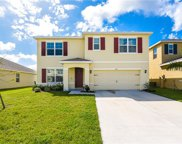 4927 Willow Preserve Way, Palmetto image