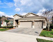 12183 Beach Fern Road, Orlando image