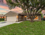 3677 Montclair Drive, Palm Harbor image