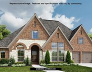 246 Saltgrass Cove, Dripping Springs image