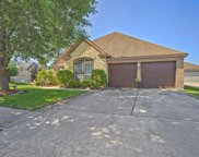 9203 Tracelawn Court, Humble image