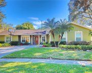 4161 Rolling Springs Drive, Tampa image