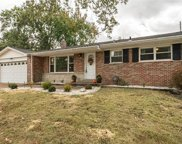 10808 Ritter  Drive, St Louis image