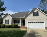 108 Kerry Gibbons Drive, Chapin image