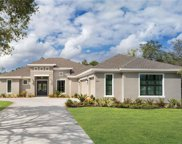 20401 Lace Cascade Road, Land O' Lakes image