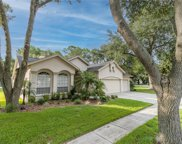 9610 Norchester, Tampa image