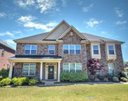 155 Indian Grass Drive, Chapin image