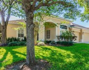 3128 Red Lion Drive, Valrico image