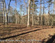 Lot #39  Brushy Ln, Arley image