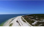 352 Starfish Ave, Carrabelle image