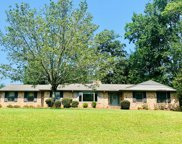 327 Old Douglas Mill Rd, Abbeville image