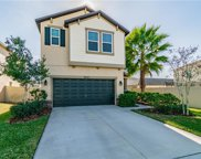 21404 Starry Eyes Way, Land O' Lakes image