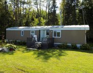 43386 S Gunderson Lake Road, Bigfork image