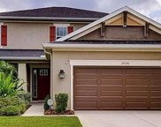 27130 Evergreen Chase Drive, Wesley Chapel image