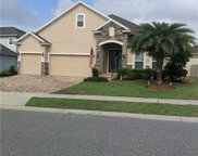 1361 Cavender Creek, Minneola image